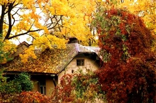 Casa aromas la casa de los aromas casa aromas so - La casa de los aromas villena ...