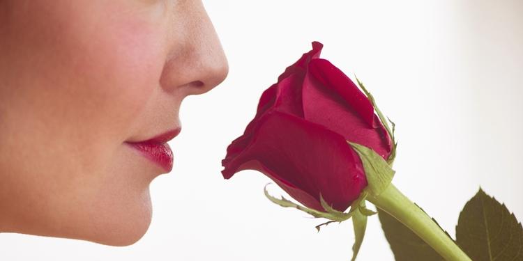 Bildergebnis für rosas oler mujer